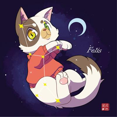 déco constellation du chat