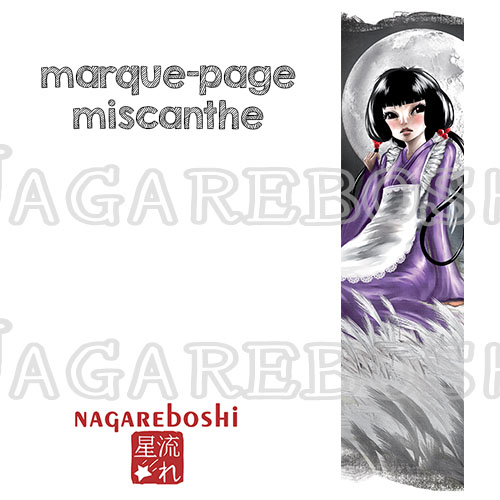 marque-page lune miscanthe